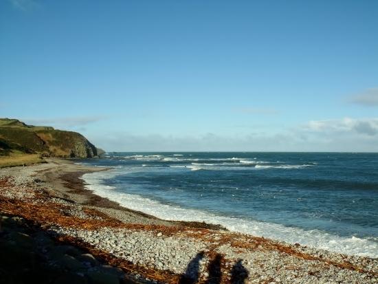 beach 011 (550x413)