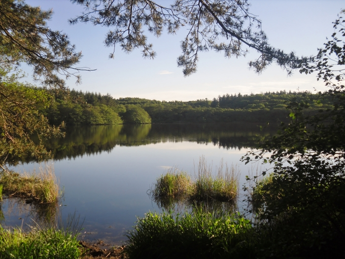 summer loch