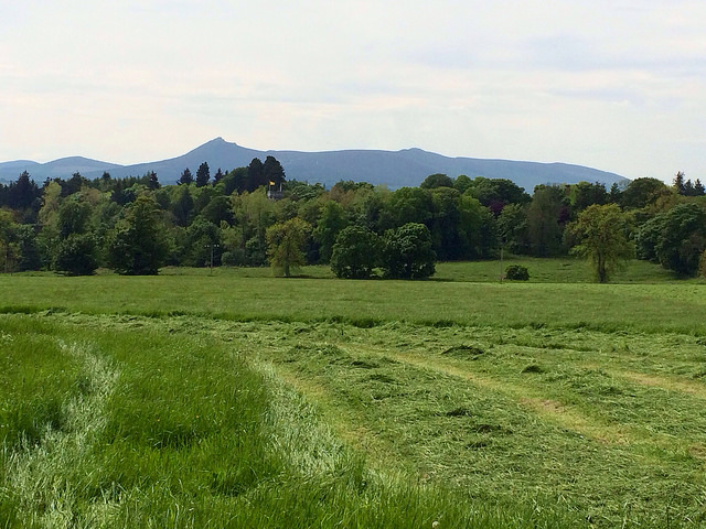 Bennachie in the distance